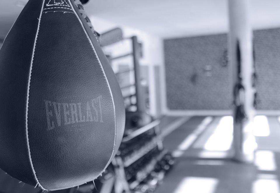 Elite coaching club - Boxe - Lyon